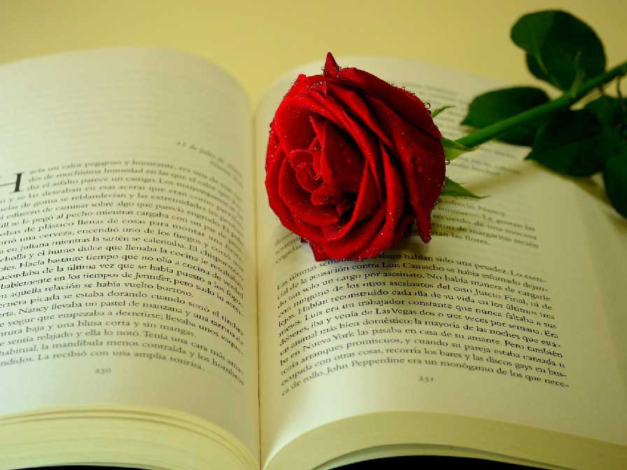 poemas bodas de plata amor